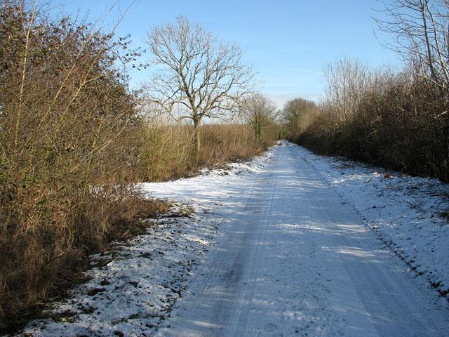 A snowy Springwood Lane