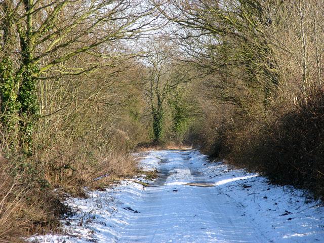 View east along Springwood Lane