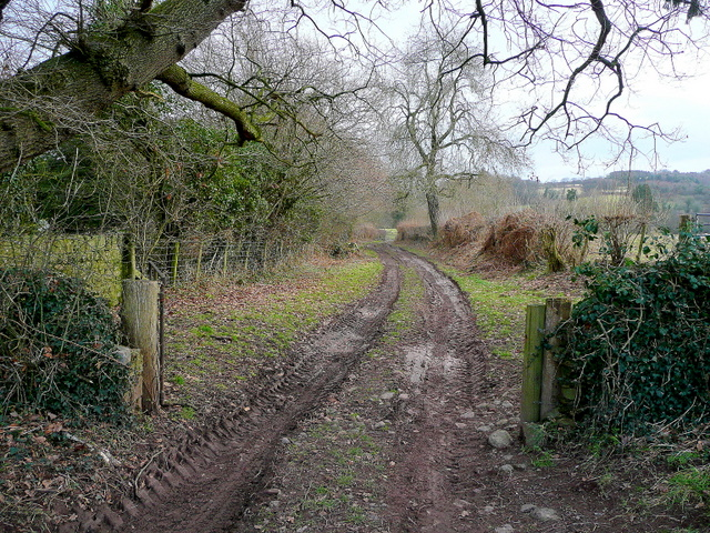 A rutted farm track