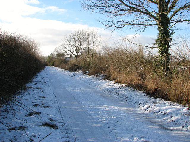 View west along a snowy Springwood Lane