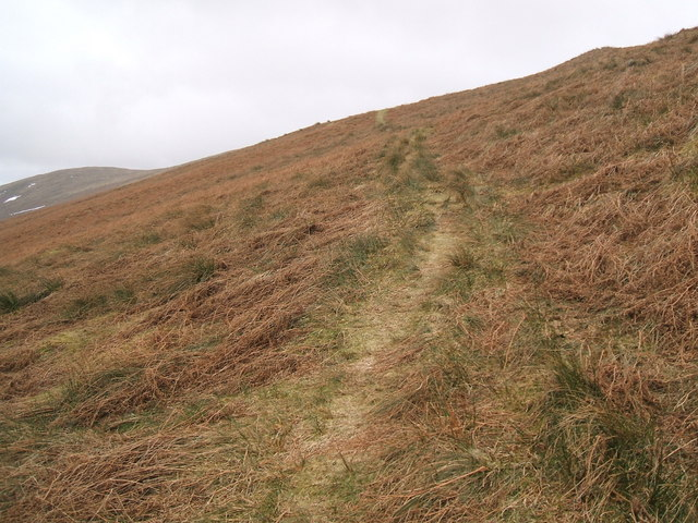 Path up Souther Fell