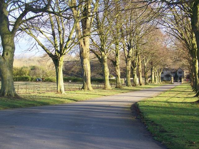 Drive to Fresden Farm