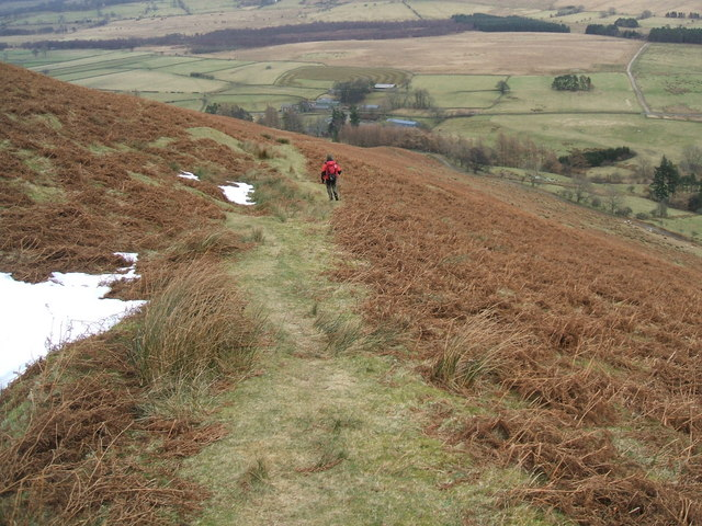 Path on Souther Fell
