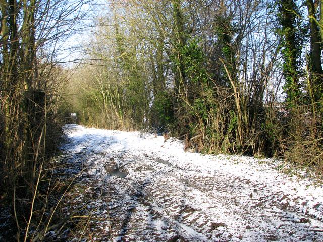 A walk along Green Lane