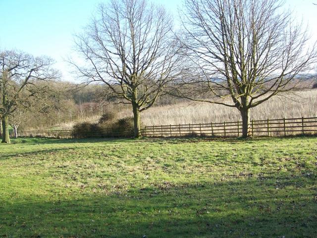 Rough grazing, Fresden Farm