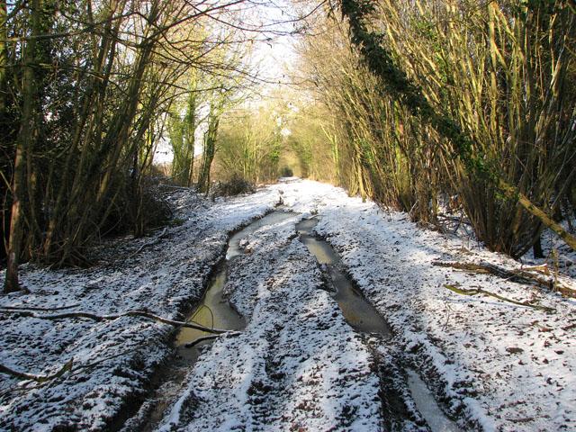 Frozen ruts on Green Lane