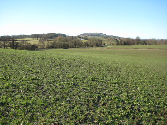 View to Berrow Hill