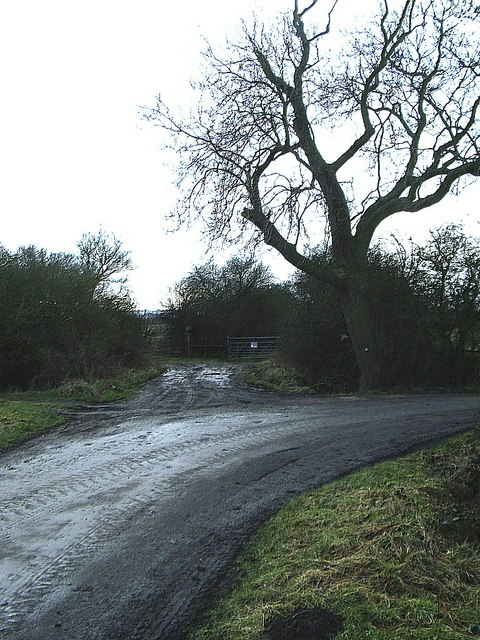 Country lane corner (access to Bridleway)