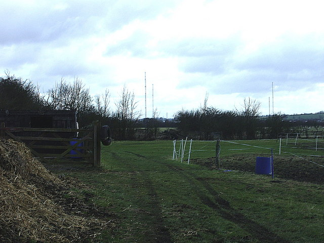 Paddock in field alongside bridleway