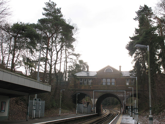 Trees at Tadworth station