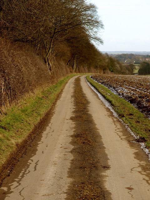The road to Bishop Burton