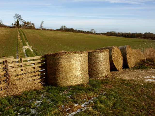 Wolds' Bales