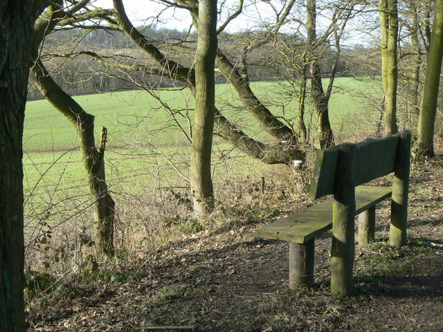 Seat on the Rowthorne Trail