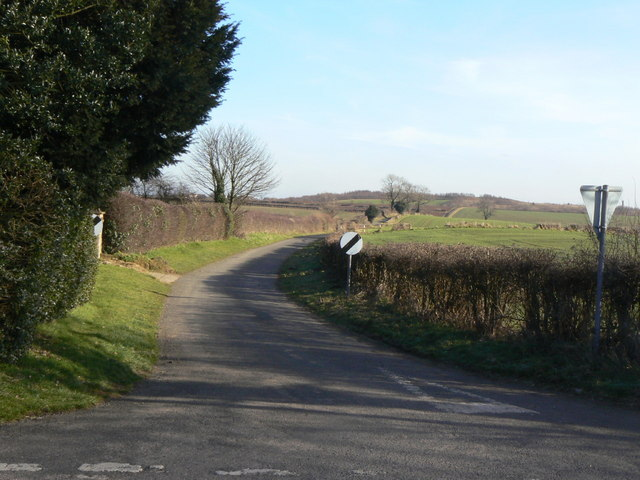 Dale Lane