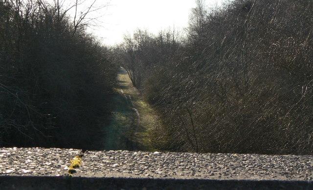 Teversal Trail