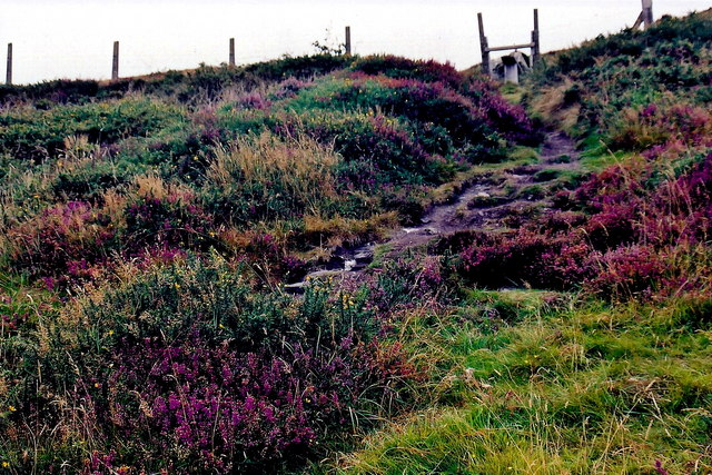 Mull Hill - Mull or Meayll Circle burial site