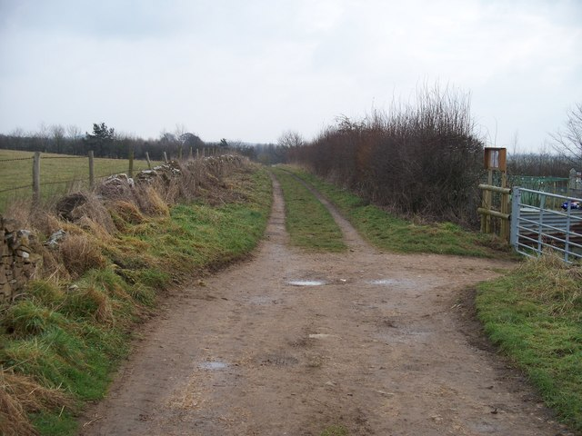 Track to the Glyme Valley