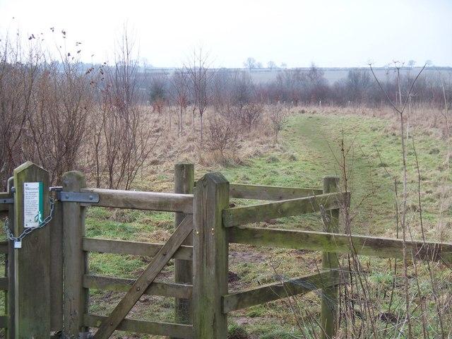 William Fowler Memorial Wood