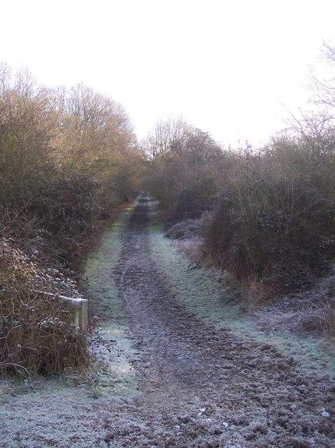 The Eden Valley Walk in Haysden Country Park