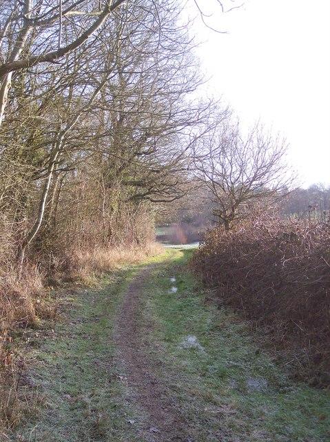 The Wealdway near Beechy Toll