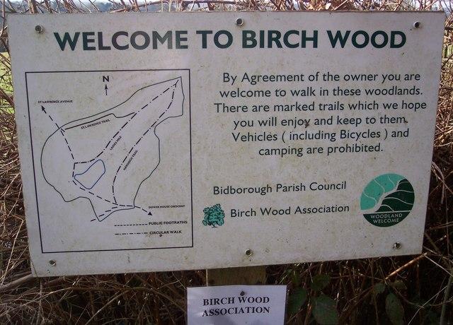 Birch Wood Information Panel