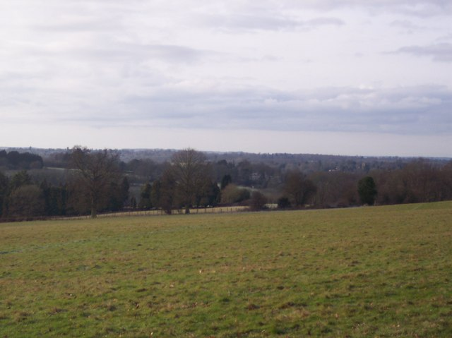 View from footpath to Birch Wood