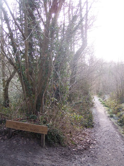 Entrance to Birch Wood
