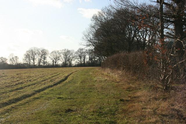 High Weald Landscape trail follows the hedge near North Clays