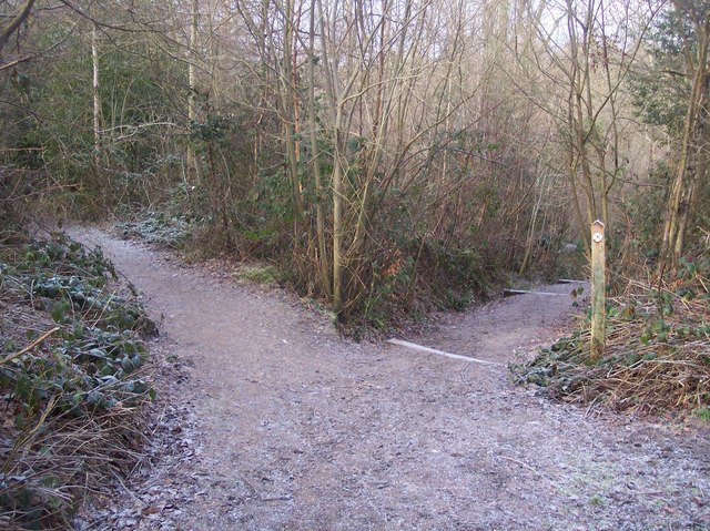 Footpath junction near Birch Wood (2)