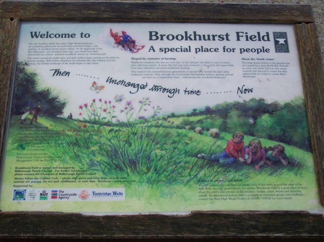 Brookhurst Field  Information Board