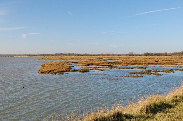 Salt-marsh, Paglesham Reach