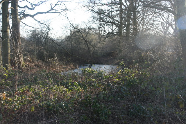 Pond by the High Weald Landscape Trail