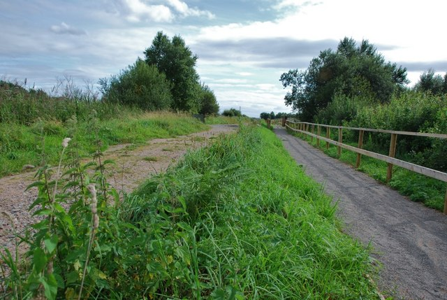 Westhay Moor: Dagg's Lane Drove