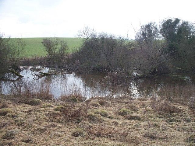 River Glyme