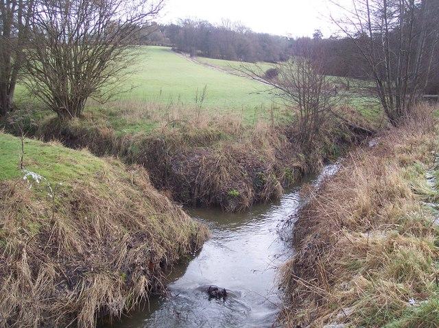 Stream junction near Scriventon