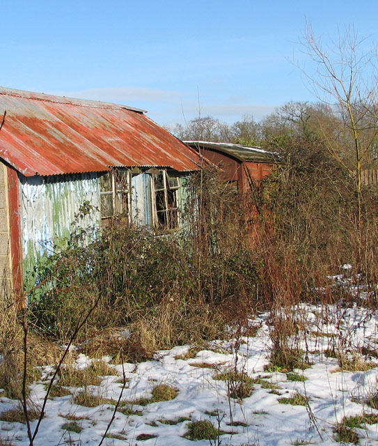 Overgrown sheds