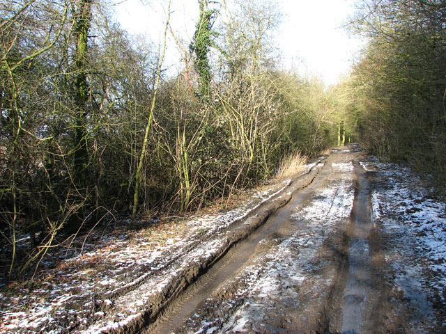 Hobb's Lane