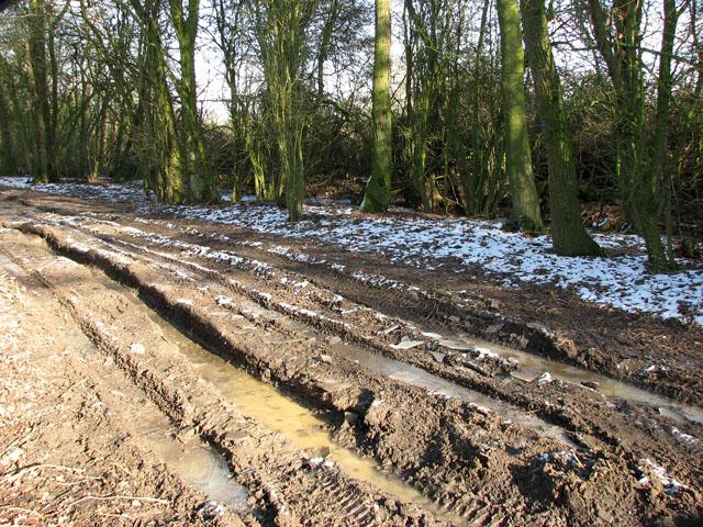 Frozen mud on Hobb's Lane