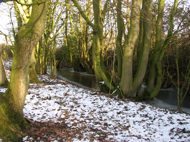 Frozen-over ditch beside Hobb's Lane