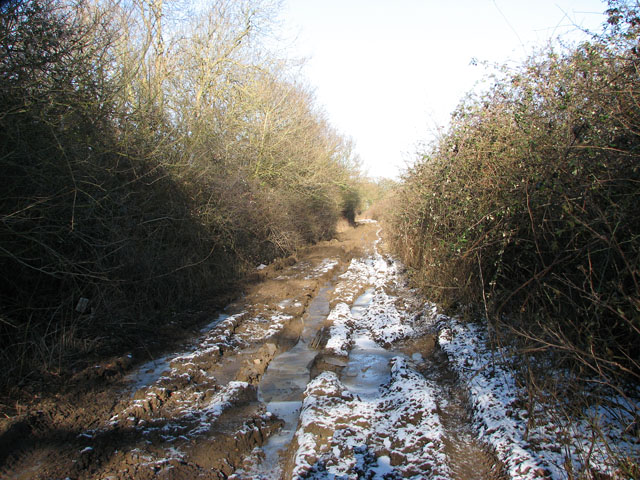 Frozen mud on Hobb's Lane