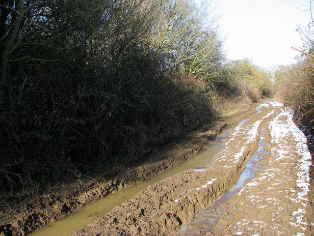 Thawing mud on Hobb's Lane