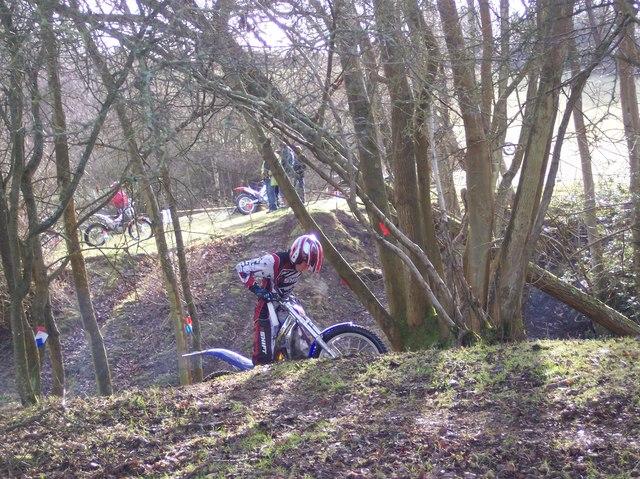 Scrambling in Furzefield Wood