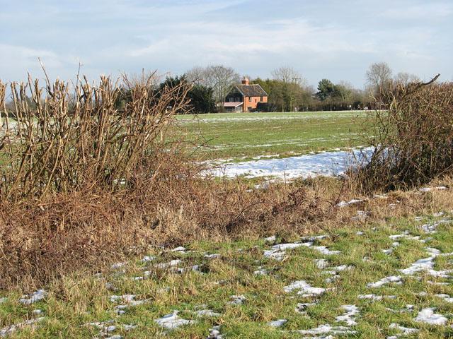 Gap in field boundary hedge