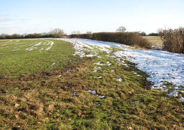 A snowy field boundary