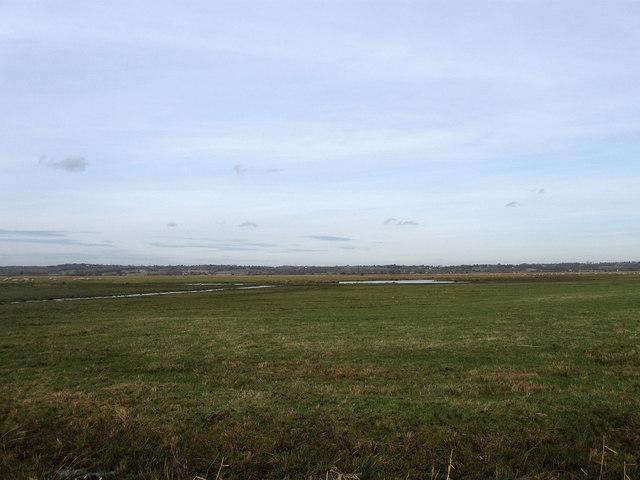 Third Marsh