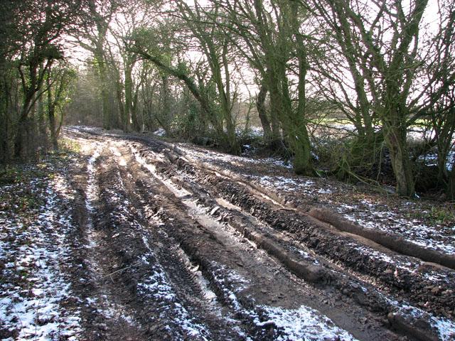 Frozen ruts on Hobb's Lane