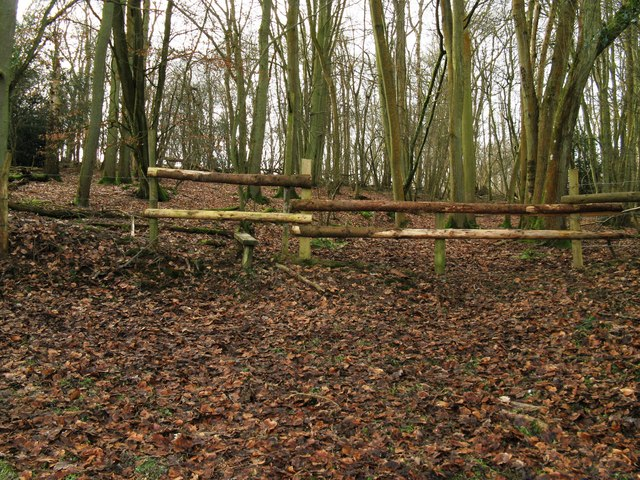 Stile and rustic fence on the edge of London Copse