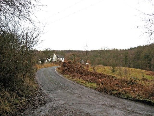 Road to Lodge Hill Farm