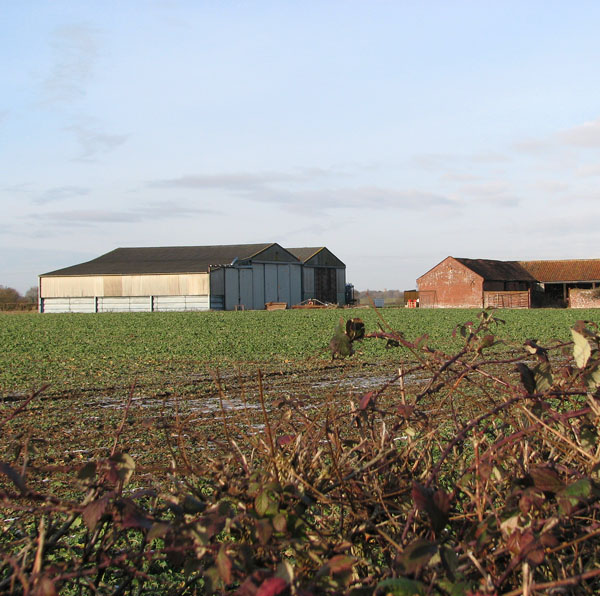 Sheds and barns by Home Farm