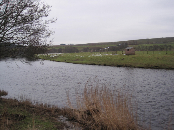 River North Tyne